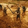 43 foreign illegal miners busted